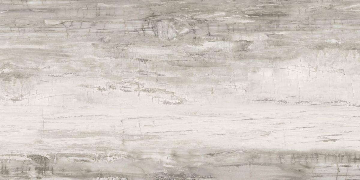 Petrified Wood - Grey 9